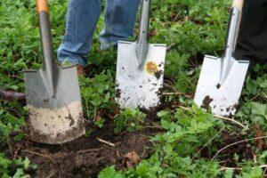 Best-Trenching-Shovels